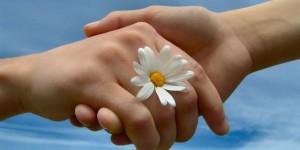 colloquio e floriterapia